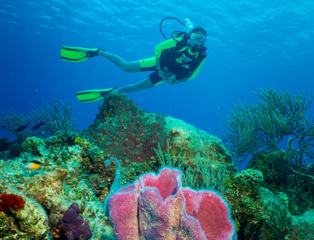 Discover SCUBA Diving In Cozumel - Cozumel Cruise Excursions