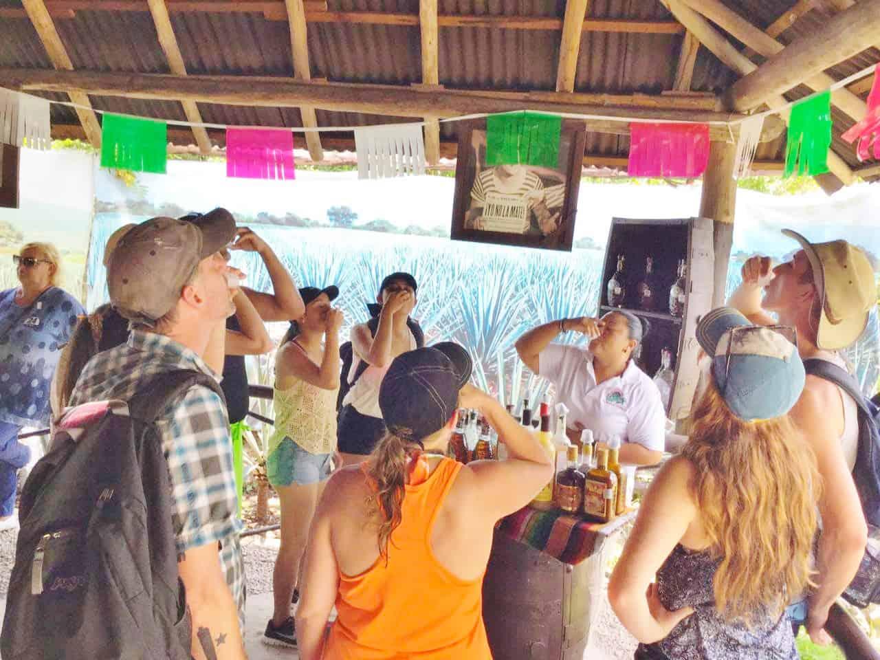 Cozumel Dune Buggy Tequila Tasting Cozumel Cruise Excursions