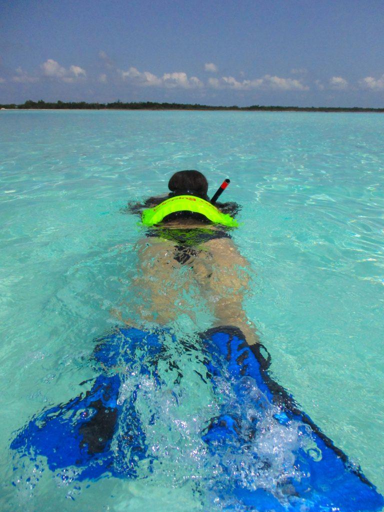 Cozumel El Cielo Sandbar Snorkeling