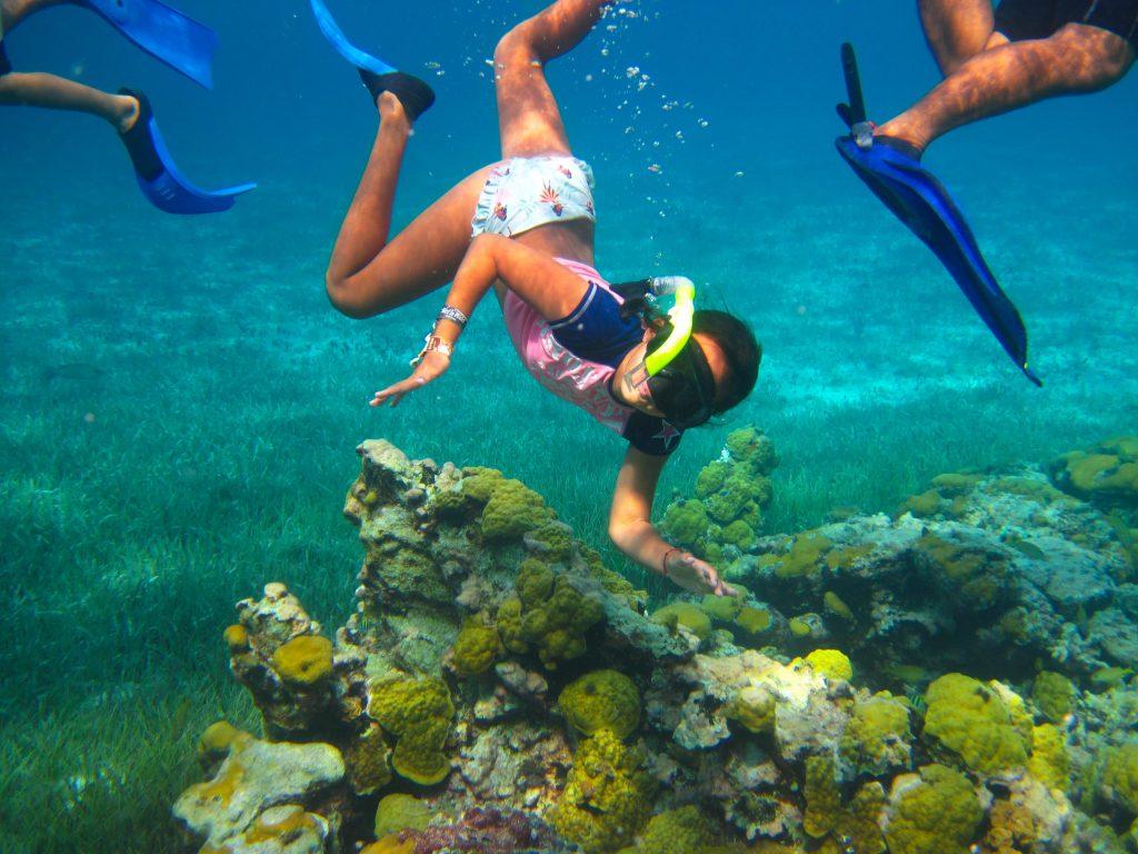 Cozumel Private Snorkeling Palancar Reef