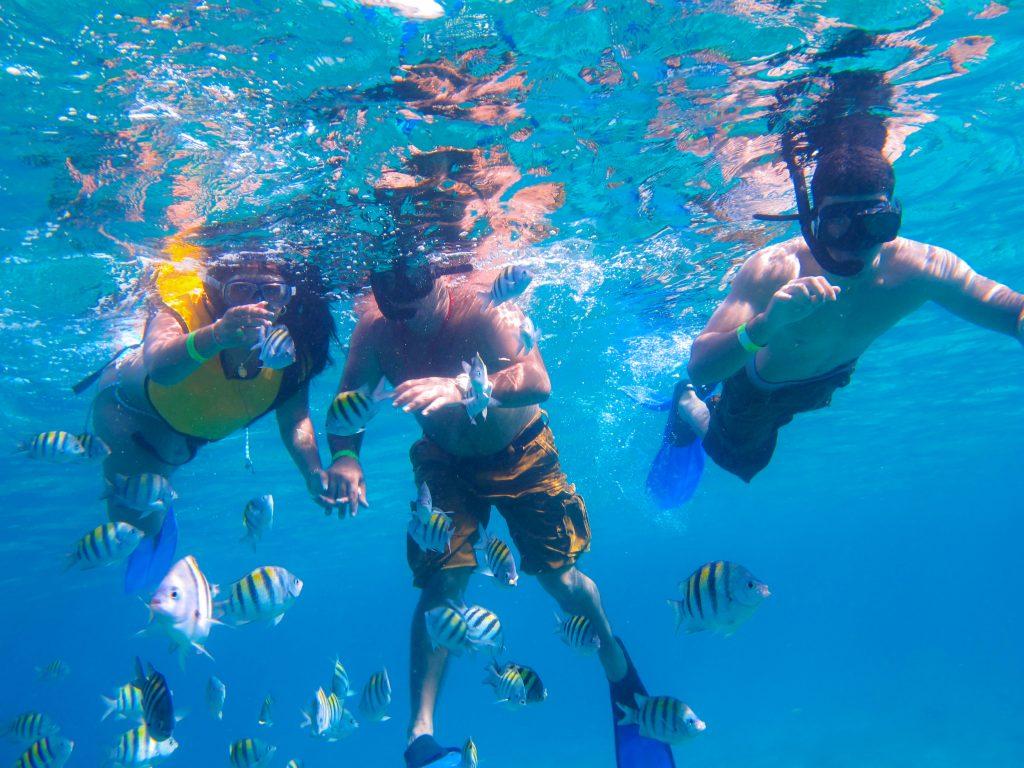 Cozumel Shore Snorkeling Amp Beach Club Cozumel Cruise