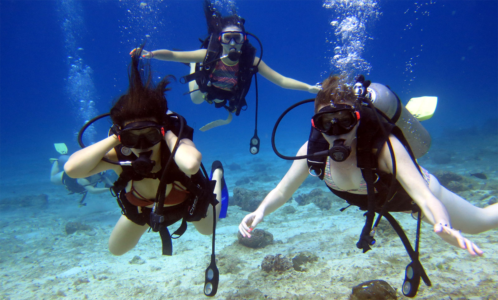 cozumel discover scuba dive and buggy island tour excursion